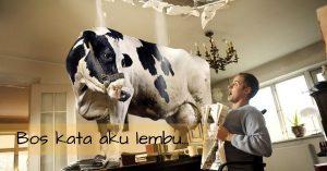 Bos kata aku lembu…