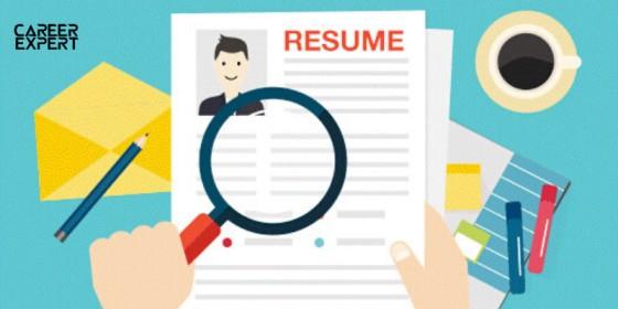 resume review service by nik faiz